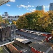 2 Room Apartment with Great Balcony and View of Limmat